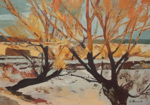 Soleil d\'hiver dans les branches (Saclay)